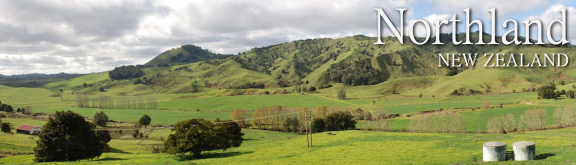 Northland New Zealand | Directory of Horticulture